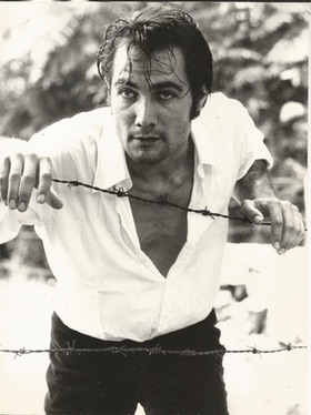 Michel Fraancois TV Actor
